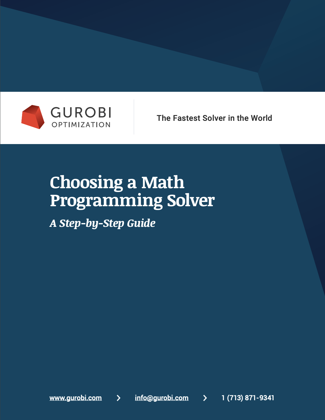 eBook: Choosing A Math Programming Solver - A Step by Step Guide